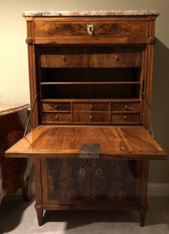 Louis XVI drop front desk- styylish